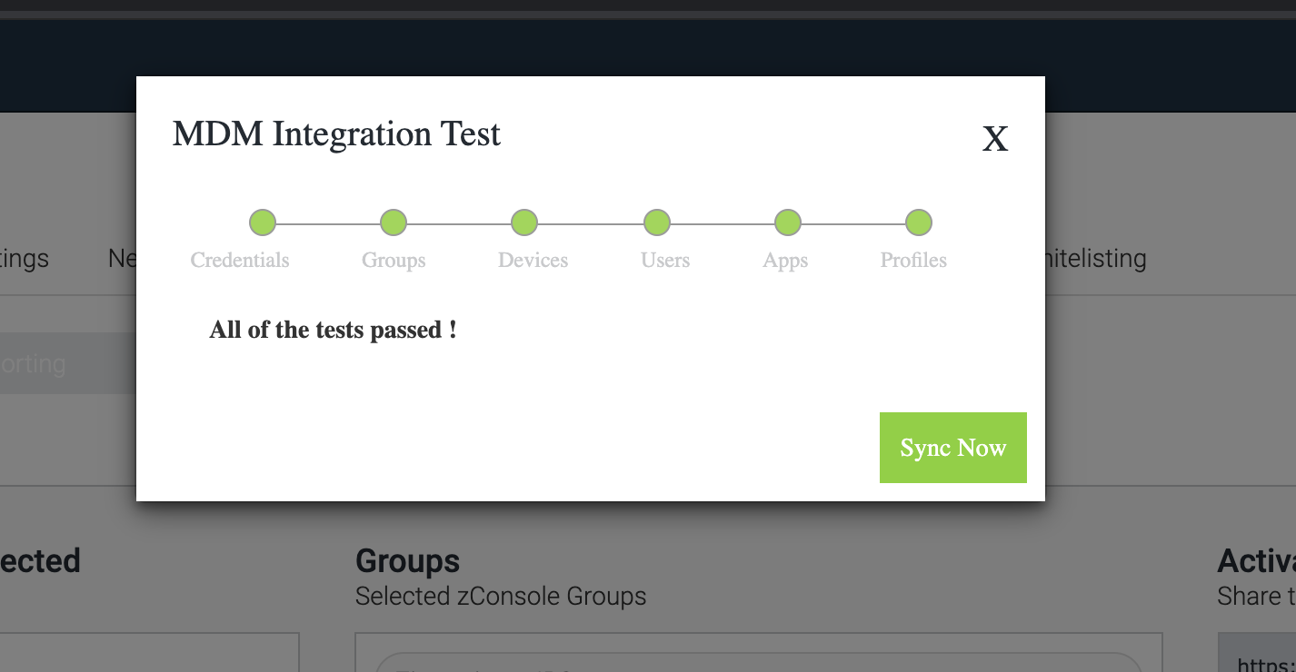 MDM Integration Test screenshot all of the tests passed