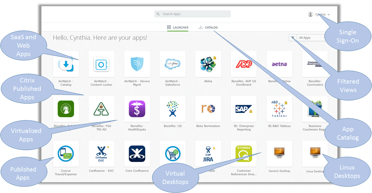 VMware Identity Manager Supports User Portal Features