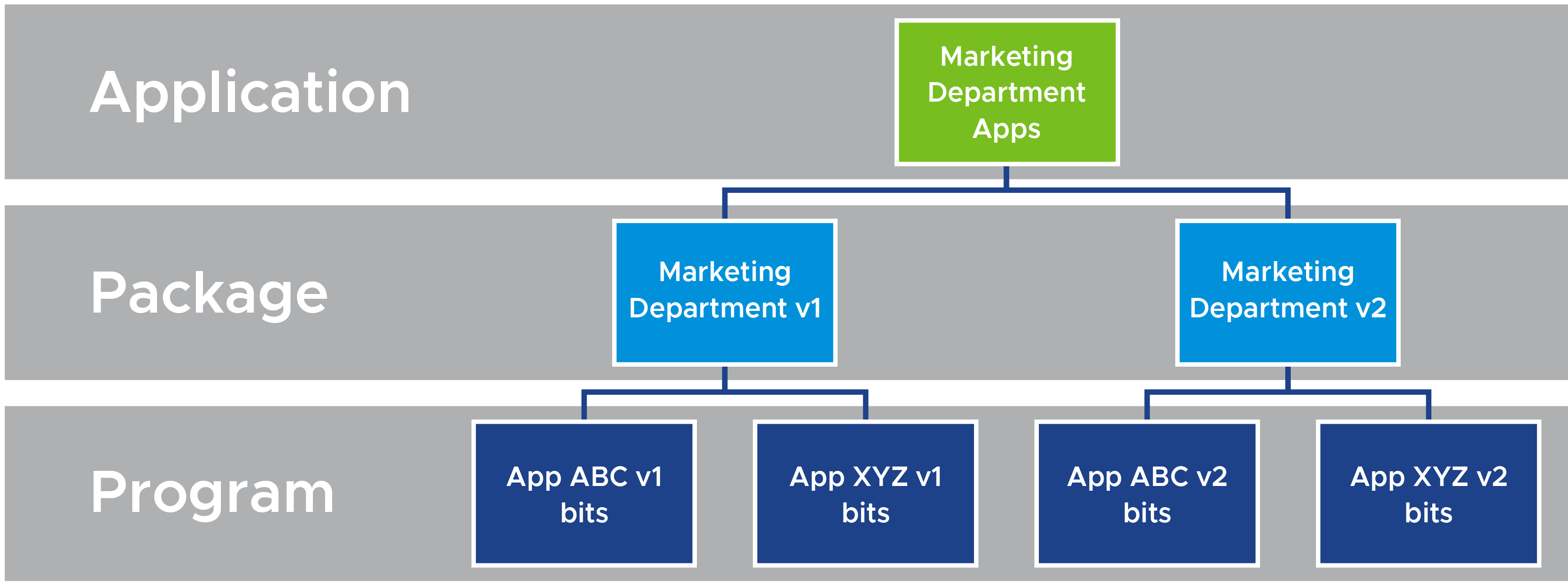 Logical Diagram of Application That Includes Program Bits for Multiple Applications and Versions